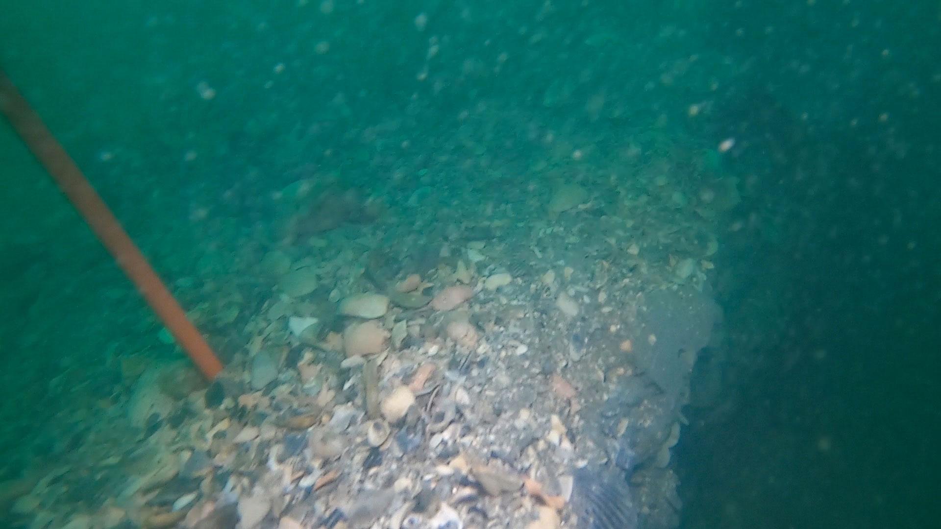 Seafarer-Exploration-Corp-SeaSearcher-Hydro-Probe-Dredge-Hole