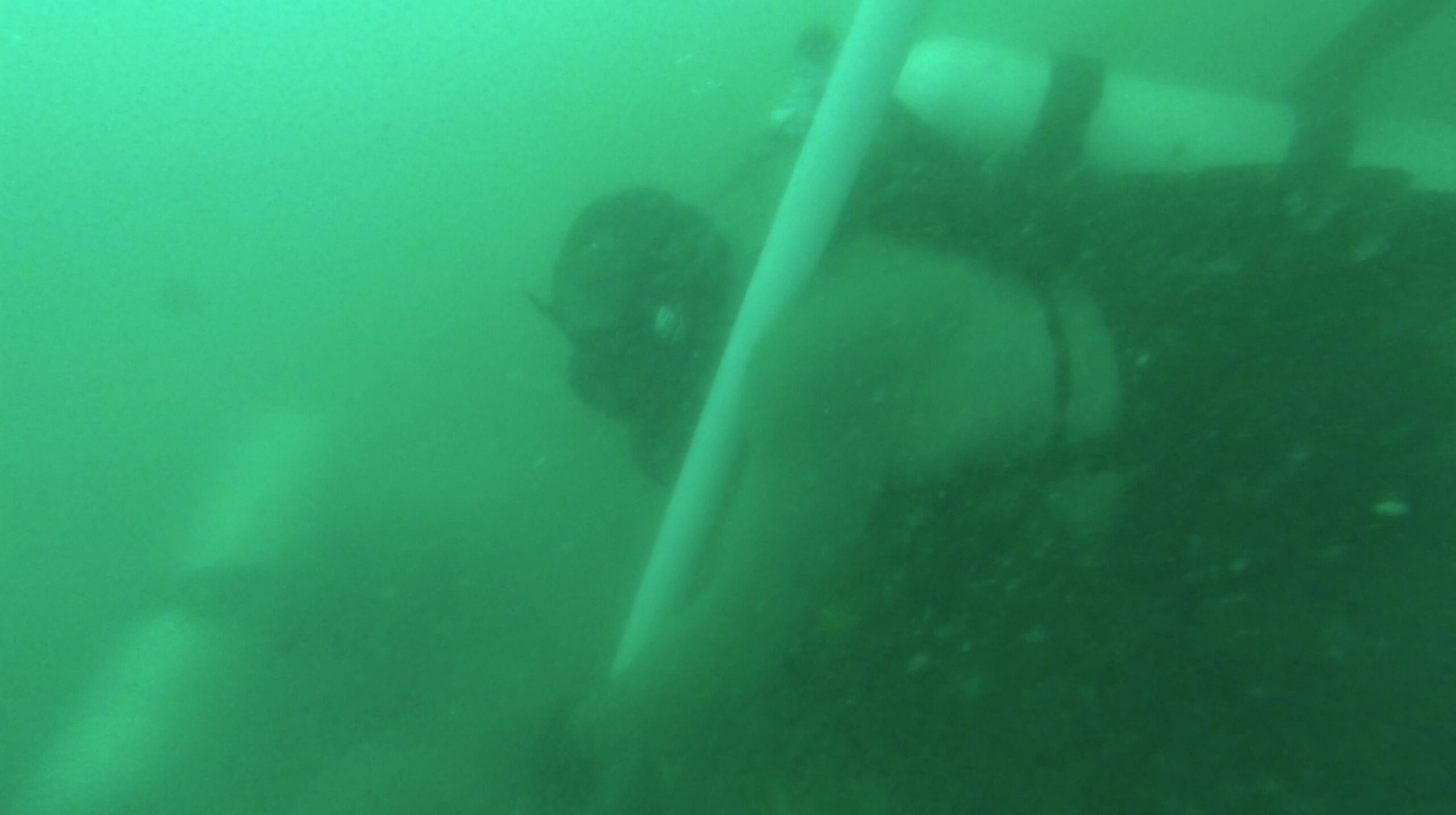 SeaSearcher Scanning Identified A New Target Area