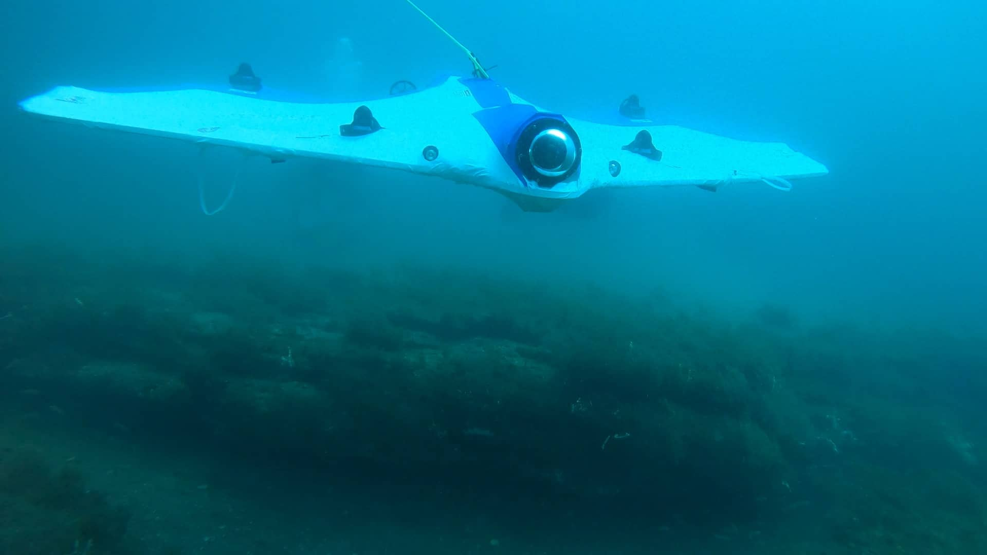 SeaSearcher In Its Full Glory